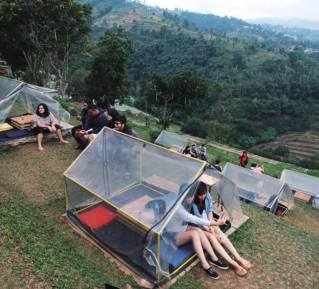 The Jarrdin Cihampelas Kota Bandung Jawa Barat: Lereng Anteng Panoramic Coffee Punclut Bandung