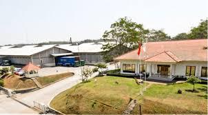 PT.Dharma Satya Nusantara