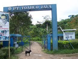 PT.Toarco Jaya